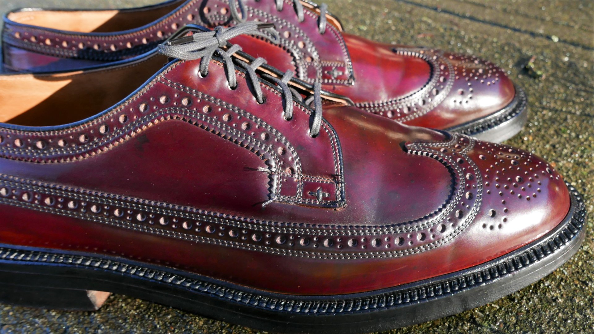 Shell Cordovan polishing